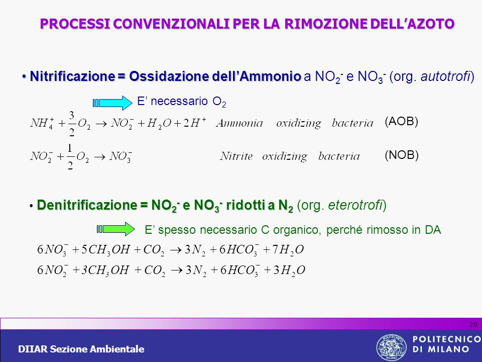 DIIAR Sezione Ambientale 20 Denitrificazione = NO 2 - e NO 3 - ridotti a N 2 Denitrificazione = NO 2 - e NO 3 - ridotti a N 2 (org. eterotrofi) E spes