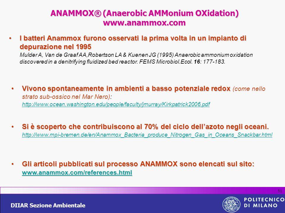DIIAR Sezione Ambientale 31 I batteri Anammox furono osservati la prima volta in un impianto di depurazione nel 1995I batteri Anammox furono osservati