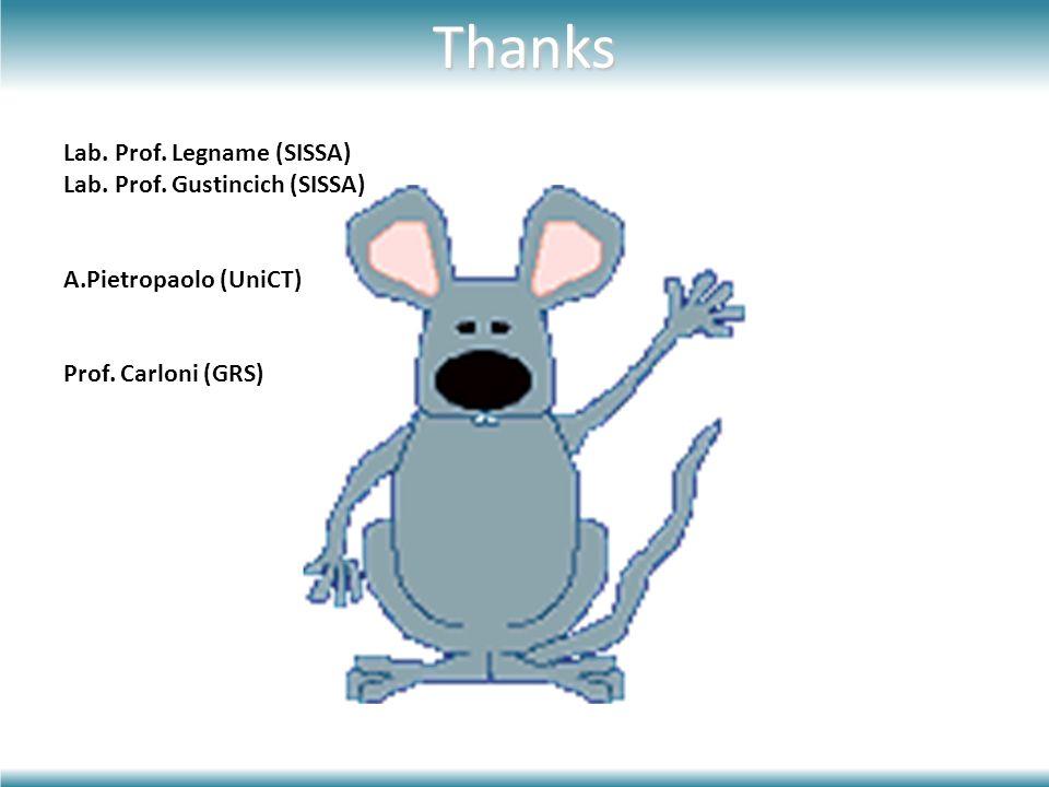 Thanks Lab. Prof. Legname (SISSA) Lab. Prof. Gustincich (SISSA) A.Pietropaolo (UniCT) Prof. Carloni (GRS)