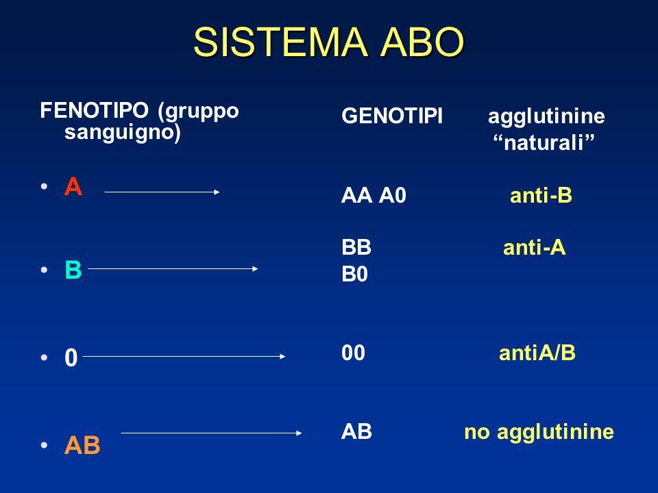 SISTEMA ABO GENOTIPI agglutinine naturali AA A0 anti-B BB anti-A B0 00 antiA/B AB no agglutinine FENOTIPO (gruppo sanguigno) A B 0 AB