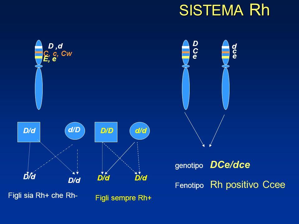 SISTEMA Rh D,d C, c, Cw E, e C e d c e D DCe/dce genotipo Fenotipo Rh positivo Ccee D/d d/D D/d Figli sia Rh+ che Rh- D/D d/d D/d Figli sempre Rh+