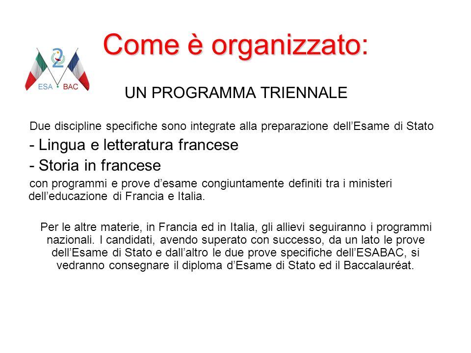 Come è organizzato Come è organizzato: UN PROGRAMMA TRIENNALE Due discipline specifiche sono integrate alla preparazione dellEsame di Stato - Lingua e