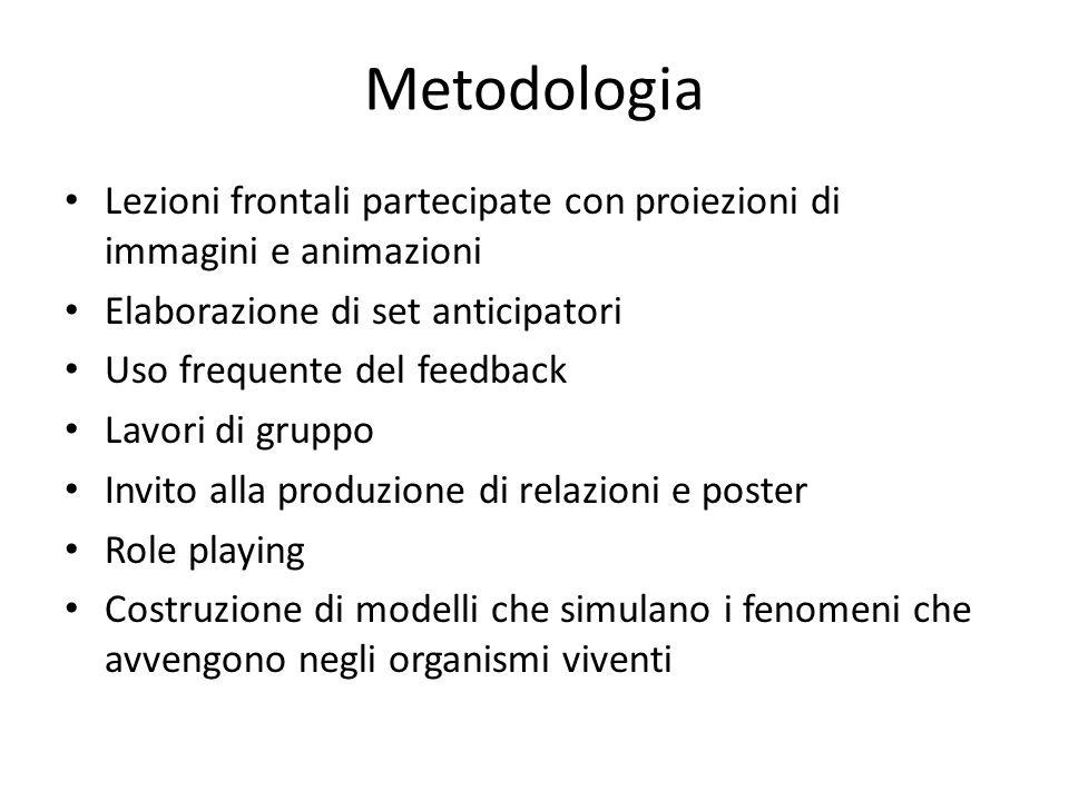 Metodologia Lezioni frontali partecipate con proiezioni di immagini e animazioni Elaborazione di set anticipatori Uso frequente del feedback Lavori di
