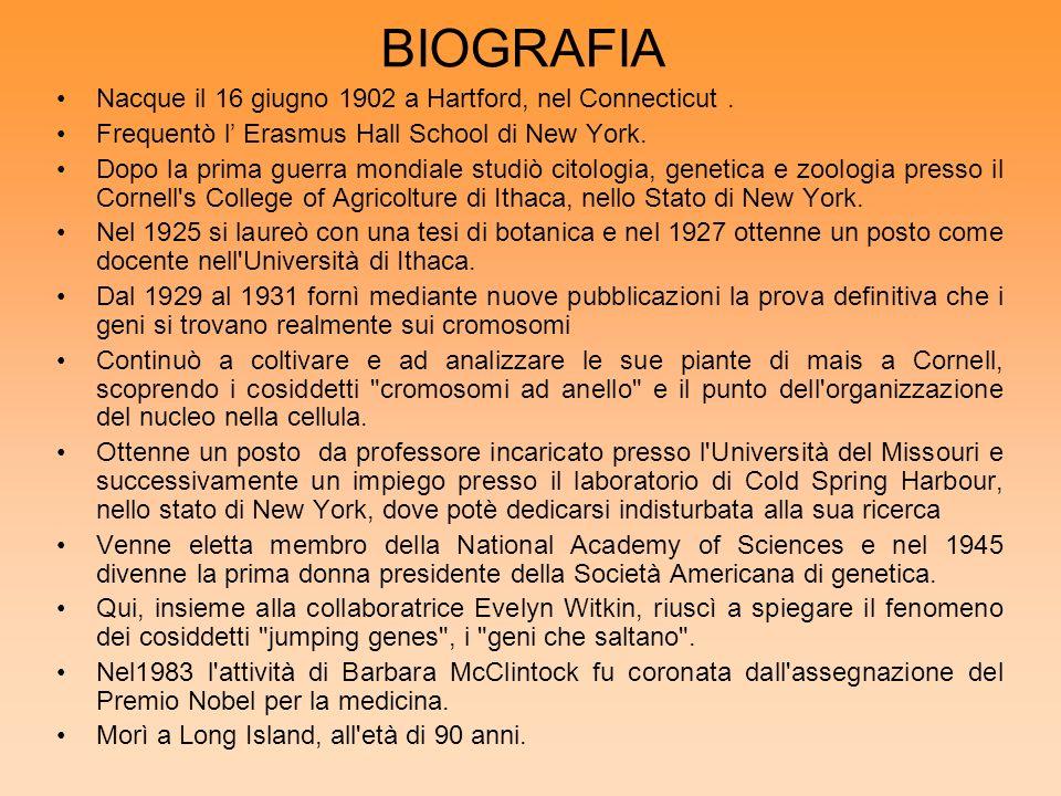 BIOGRAFIA Nacque il 16 giugno 1902 a Hartford, nel Connecticut. Frequentò l Erasmus Hall School di New York. Dopo la prima guerra mondiale studiò cito