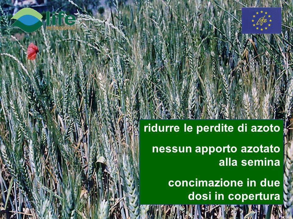 ridurre le perdite di azoto nessun apporto azotato alla semina concimazione in due dosi in copertura