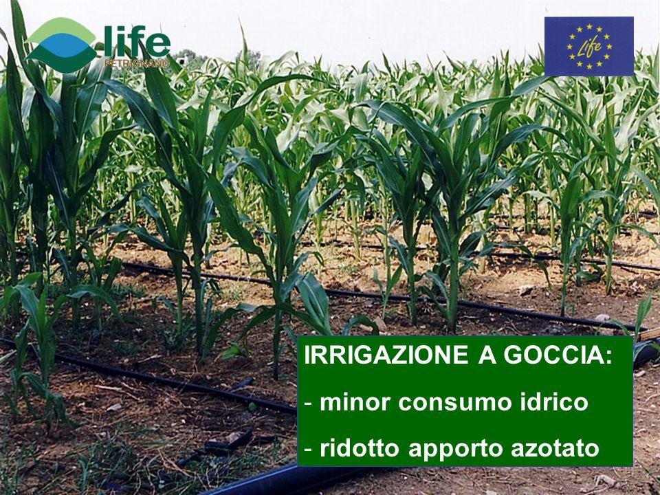 IRRIGAZIONE A GOCCIA: - minor consumo idrico - ridotto apporto azotato