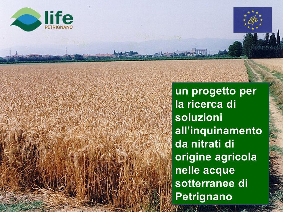 un progetto per la ricerca di soluzioni allinquinamento da nitrati di origine agricola nelle acque sotterranee di Petrignano