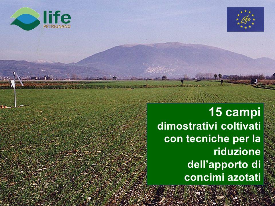 15 campi dimostrativi coltivati con tecniche per la riduzione dellapporto di concimi azotati