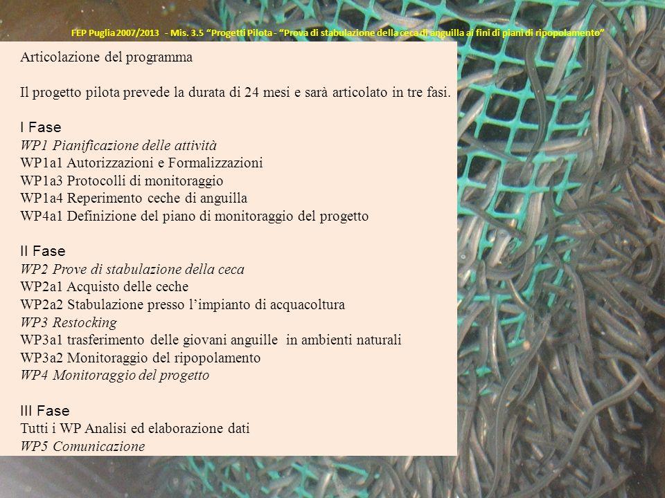 FEP Puglia 2007/2013 - Mis. 3.5 Progetti Pilota - Prova di stabulazione della ceca di anguilla ai fini di piani di ripopolamento Articolazione del pro