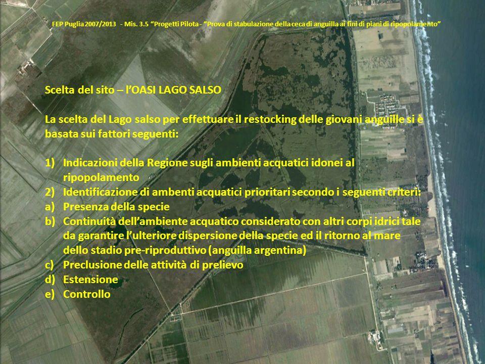 FEP Puglia 2007/2013 - Mis. 3.5 Progetti Pilota - Prova di stabulazione della ceca di anguilla ai fini di piani di ripopolamento Scelta del sito – lOA