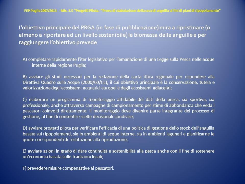 FEP Puglia 2007/2013 - Mis. 3.5 Progetti Pilota - Prova di stabulazione della ceca di anguilla ai fini di piani di ripopolamento Lobiettivo principale