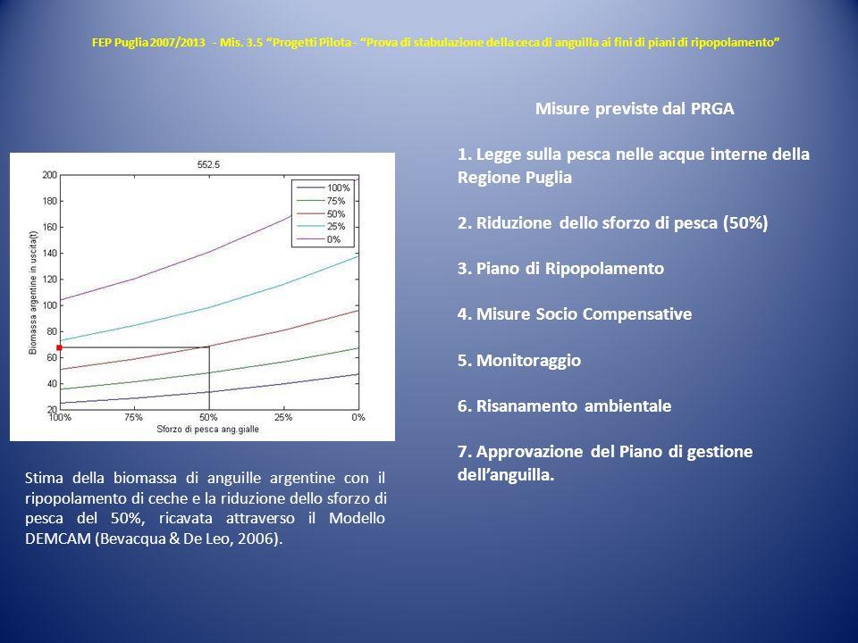 FEP Puglia 2007/2013 - Mis. 3.5 Progetti Pilota - Prova di stabulazione della ceca di anguilla ai fini di piani di ripopolamento Misure previste dal P