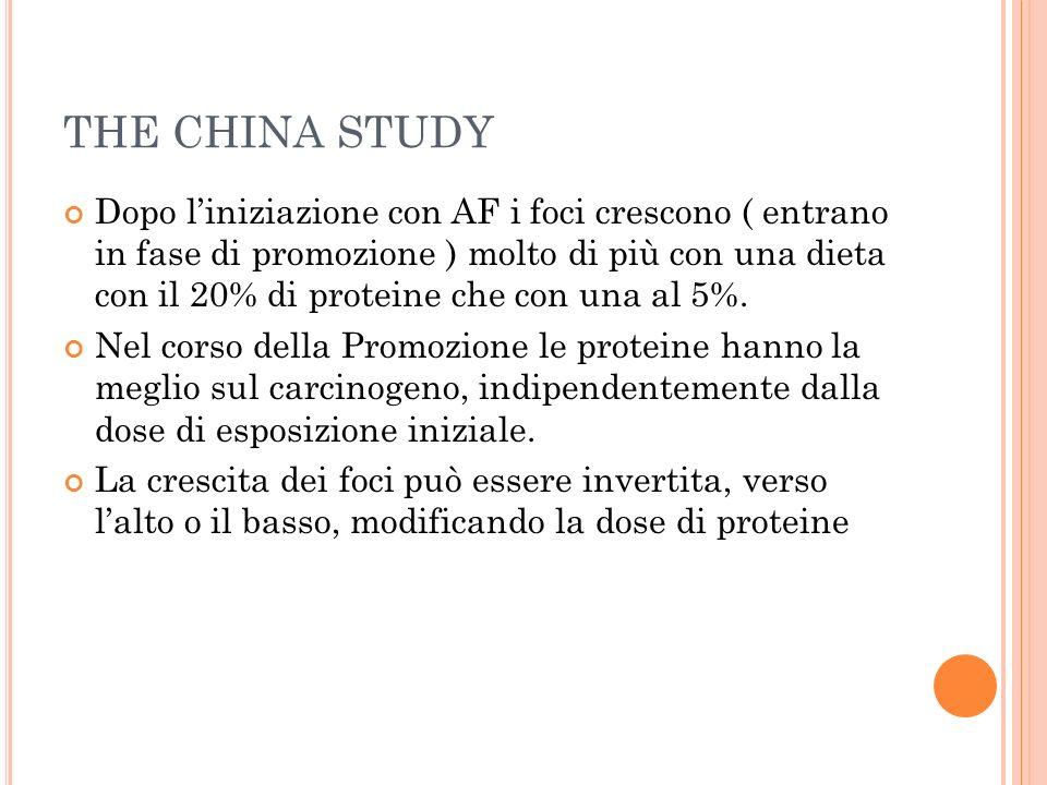 THE CHINA STUDY Dopo liniziazione con AF i foci crescono ( entrano in fase di promozione ) molto di più con una dieta con il 20% di proteine che con u