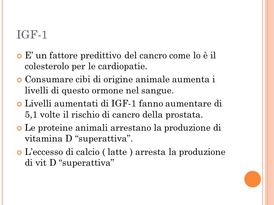 IGF-1 E un fattore predittivo del cancro come lo è il colesterolo per le cardiopatie. Consumare cibi di origine animale aumenta i livelli di questo or