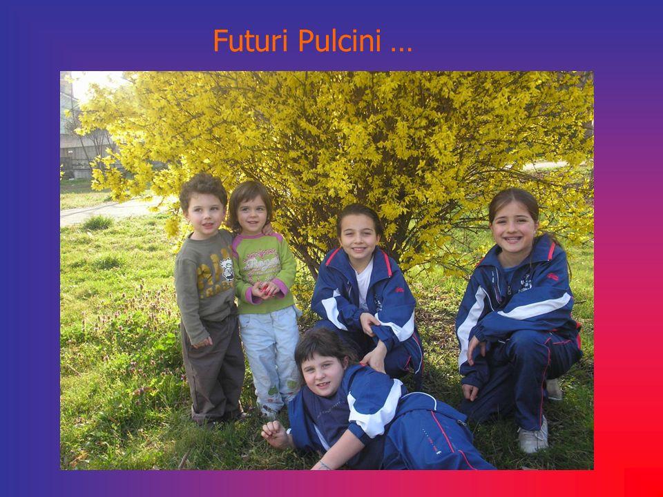 Futuri Pulcini …