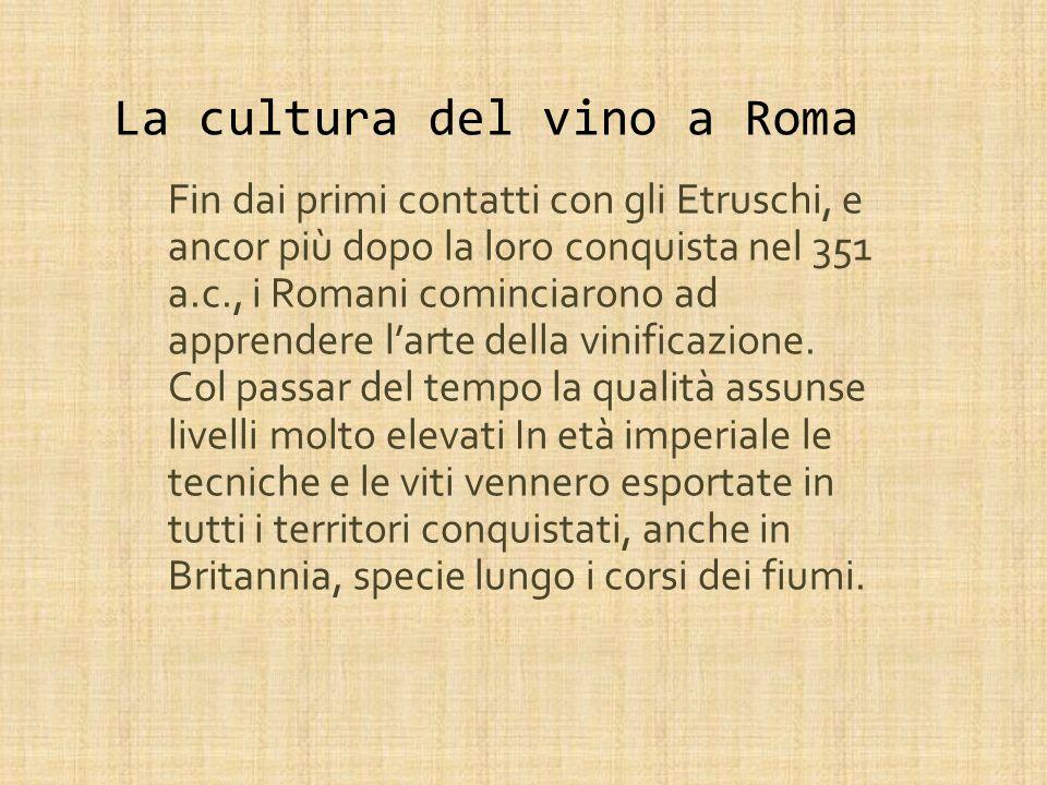 La cultura del vino a Roma Fin dai primi contatti con gli Etruschi, e ancor più dopo la loro conquista nel 351 a.c., i Romani cominciarono ad apprendere larte della vinificazione.
