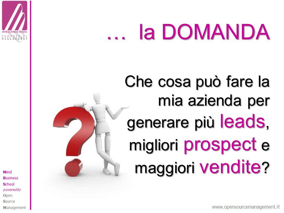 … la DOMANDA Che cosa può fare la mia azienda per generare più leads, migliori prospect e maggiori vendite ?