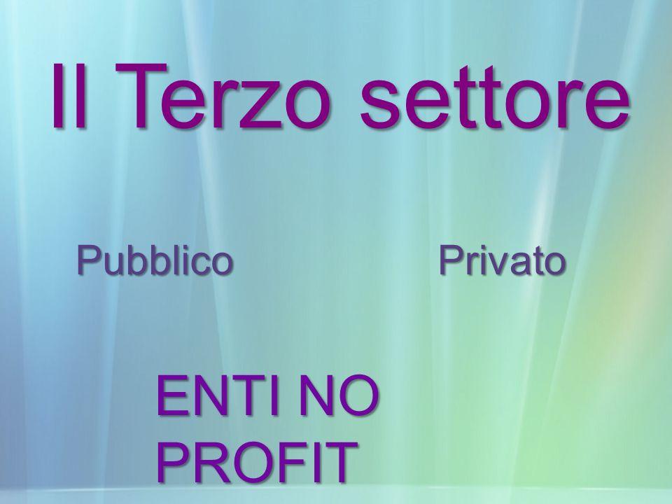 Il Terzo settore ENTI NO PROFIT PubblicoPrivato