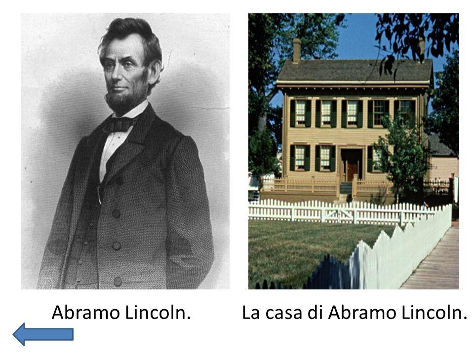 Stati Uniti Stati Uniti d America è una repubblica federale dellAmerica settentrionale.