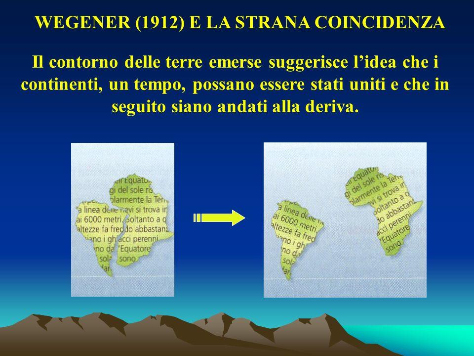 WEGENER (1912) E LA STRANA COINCIDENZA Il contorno delle terre emerse suggerisce lidea che i continenti, un tempo, possano essere stati uniti e che in