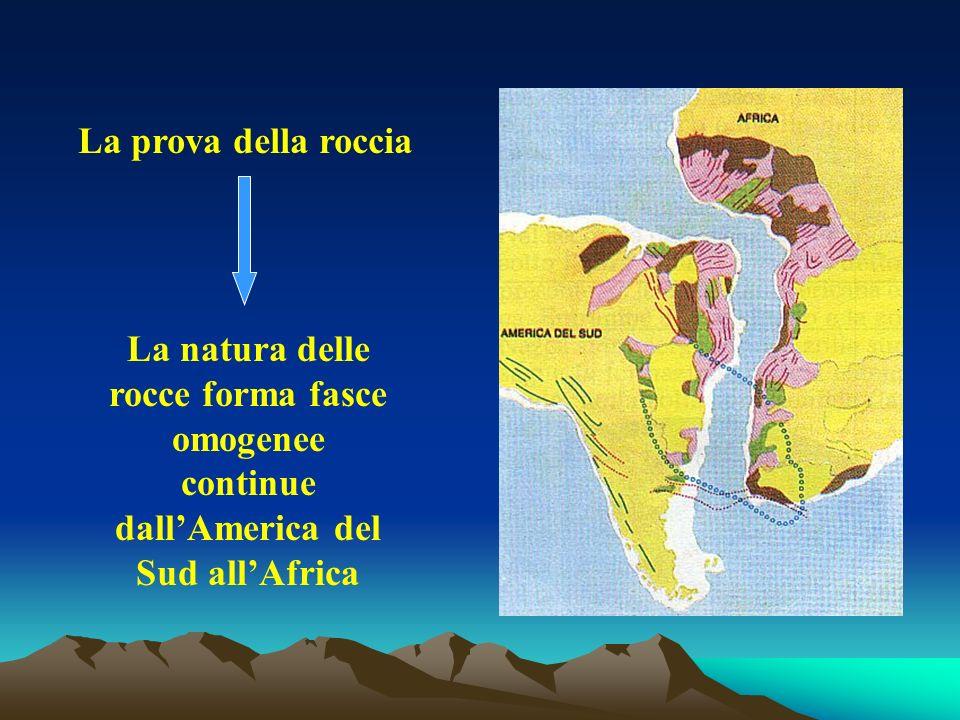 La prova della roccia La natura delle rocce forma fasce omogenee continue dallAmerica del Sud allAfrica