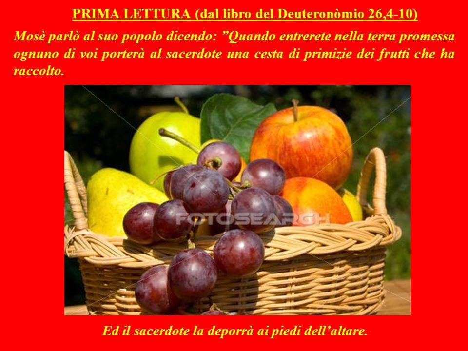 PRIMA LETTURA (dal libro del Deuteronòmio 26,4-10) Mosè parlò al suo popolo dicendo: Quando entrerete nella terra promessa ognuno di voi porterà al sacerdote una cesta di primizie dei frutti che ha raccolto.