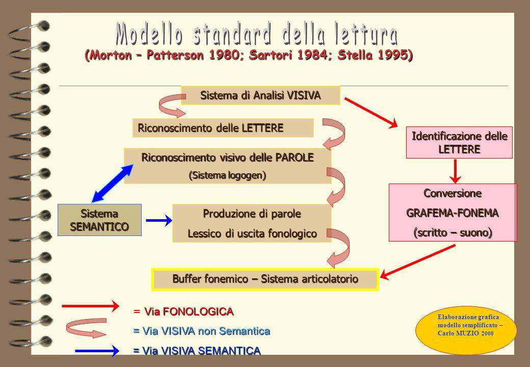 I DISTURBI DEL CALCOLO - DISCALCULIE Il modello di McClosKey e coll.