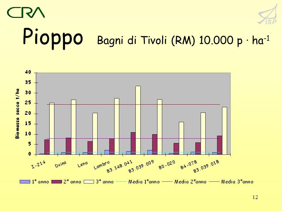 12 Pioppo Bagni di Tivoli (RM) 10.000 p · ha -1
