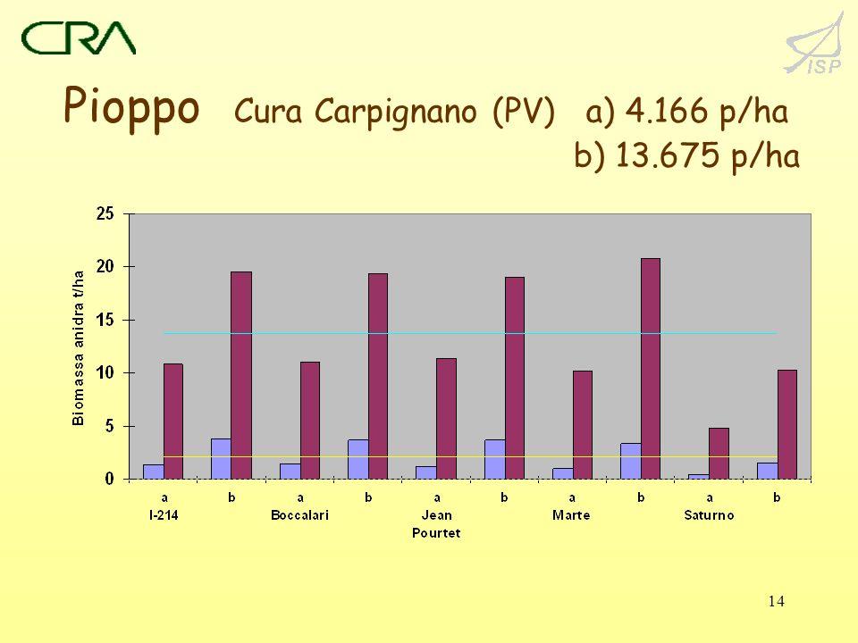 14 Pioppo Cura Carpignano (PV) a) 4.166 p/ha b) 13.675 p/ha