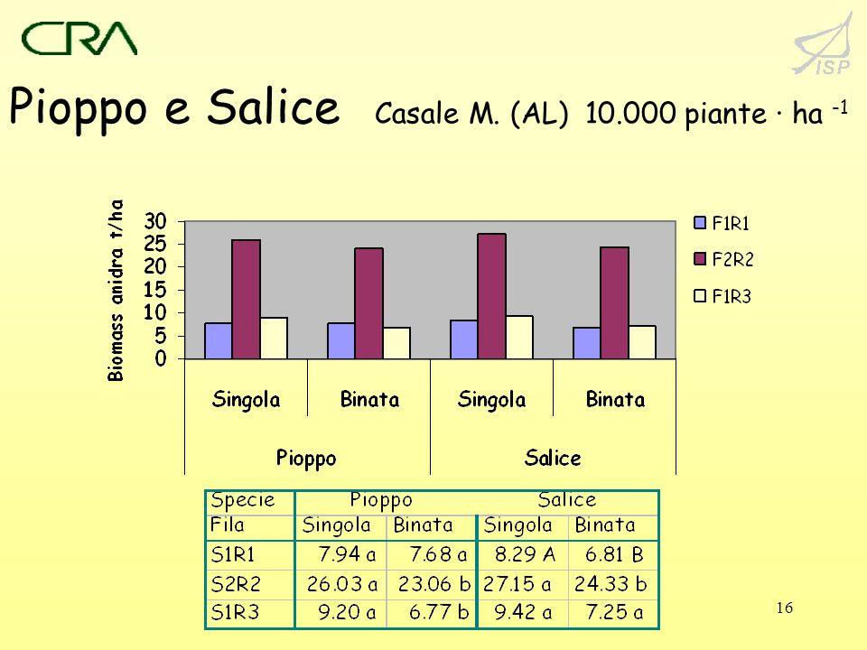 16 Pioppo e Salice Casale M. (AL) 10.000 piante · ha -1