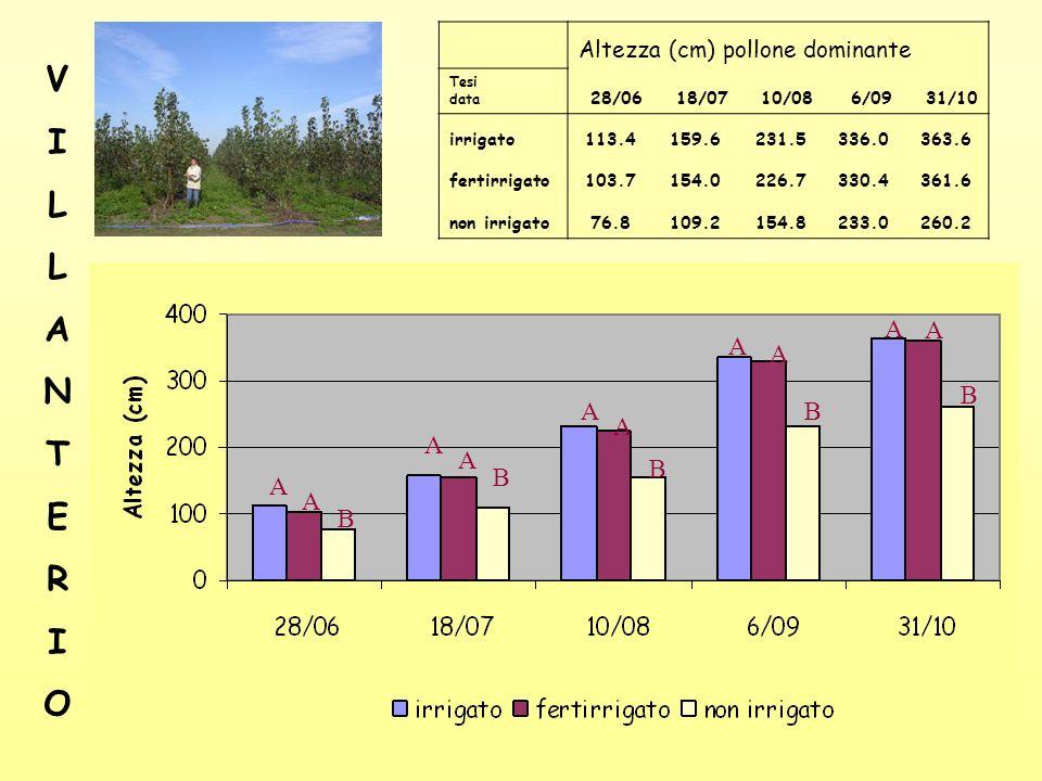 25 Altezza (cm) pollone dominante Tesi data 28/06 18/07 10/08 6/09 31/10 irrigato113.4159.6231.5336.0363.6 fertirrigato103.7154.0226.7330.4361.6 non irrigato76.8109.2154.8233.0260.2 A A B A A B A A B A A B A A B VILLANTERIOVILLANTERIO