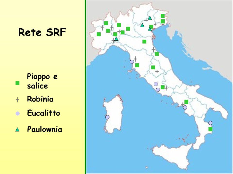 6 Pioppo e salice Eucalitto Robinia Rete SRF Paulownia