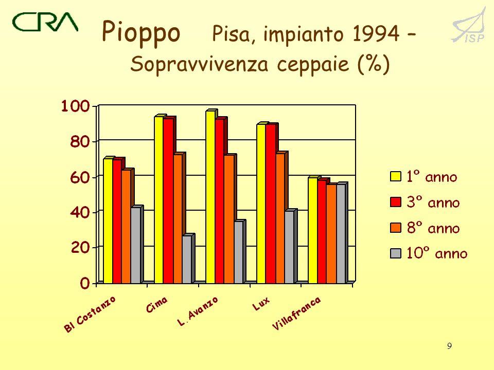9 Pioppo Pisa, impianto 1994 – Sopravvivenza ceppaie (%)