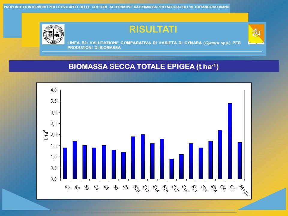 PROPOSTE ED INTERVENTI PER LO SVILUPPO DELLE COLTURE ALTERNATIVE DA BIOMASSA PER ENERGIA SULLALTOPIANO RAGUSANO RISULTATI BIOMASSA SECCA TOTALE EPIGEA (t ha -1 ) LINEA B2: VALUTAZIONE COMPARATIVA DI VARIETÀ DI CYNARA (Cynara spp.) PER PRODUZIONI DI BIOMASSA