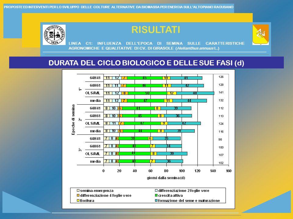 PROPOSTE ED INTERVENTI PER LO SVILUPPO DELLE COLTURE ALTERNATIVE DA BIOMASSA PER ENERGIA SULLALTOPIANO RAGUSANO RISULTATI DURATA DEL CICLO BIOLOGICO E DELLE SUE FASI (d) LINEA C1: INFLUENZA DELLEPOCA DI SEMINA SULLE CARATTERISTICHE AGRONOMICHE E QUALITATIVE DI CV.