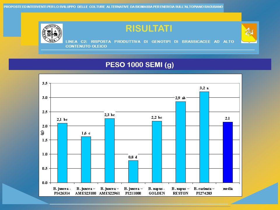 PROPOSTE ED INTERVENTI PER LO SVILUPPO DELLE COLTURE ALTERNATIVE DA BIOMASSA PER ENERGIA SULLALTOPIANO RAGUSANO RISULTATI PESO 1000 SEMI (g) LINEA C2: