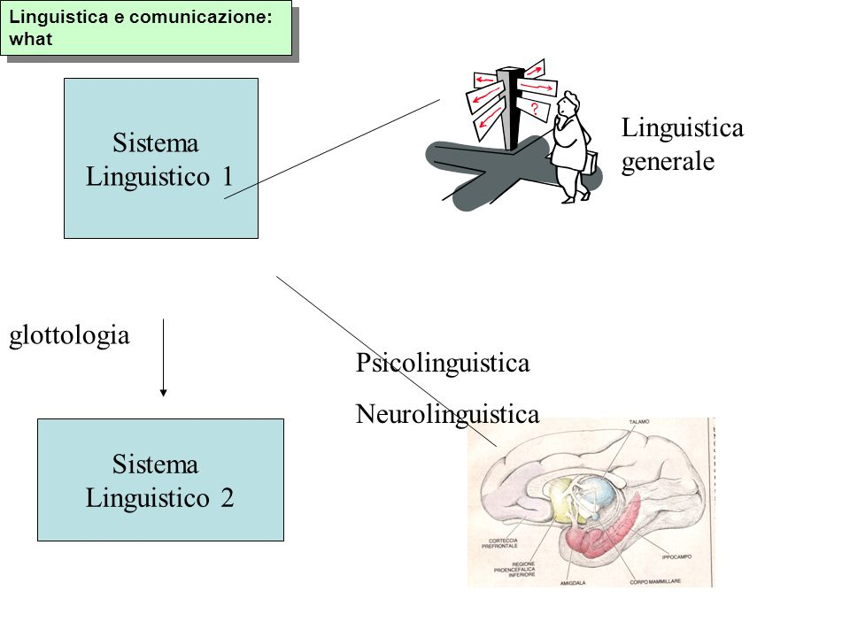 Sistema Sociale (come sistema di varianti indipendenti) Sistema Linguistico ( come sistema di varianti dipendenti) Sociolinguistica: what SSocSL