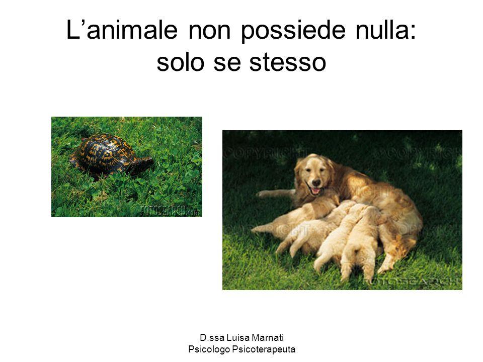 D.ssa Luisa Marnati Psicologo Psicoterapeuta Lanimale non possiede nulla: solo se stesso