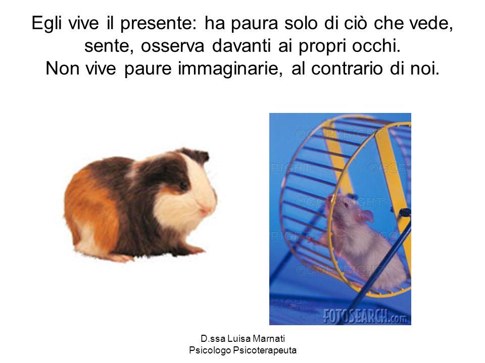 D.ssa Luisa Marnati Psicologo Psicoterapeuta Egli vive il presente: ha paura solo di ciò che vede, sente, osserva davanti ai propri occhi. Non vive pa