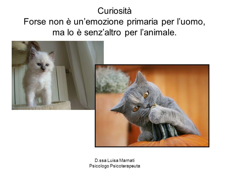D.ssa Luisa Marnati Psicologo Psicoterapeuta Curiosità Forse non è unemozione primaria per luomo, ma lo è senzaltro per lanimale.