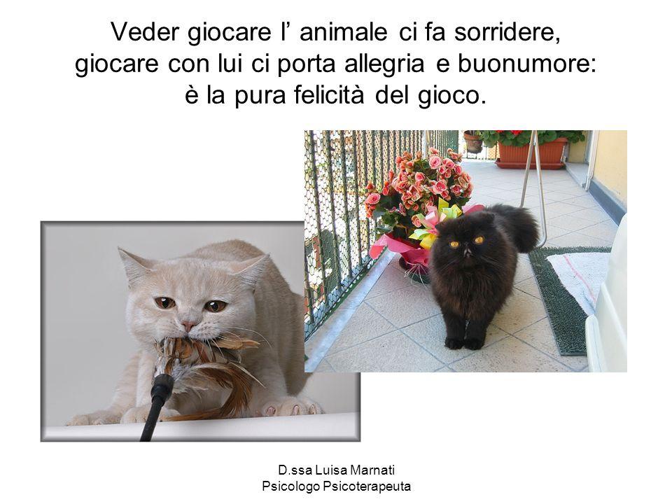 D.ssa Luisa Marnati Psicologo Psicoterapeuta Veder giocare l animale ci fa sorridere, giocare con lui ci porta allegria e buonumore: è la pura felicit