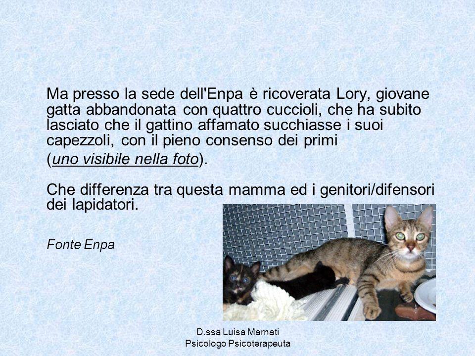 D.ssa Luisa Marnati Psicologo Psicoterapeuta Ma presso la sede dell'Enpa è ricoverata Lory, giovane gatta abbandonata con quattro cuccioli, che ha sub
