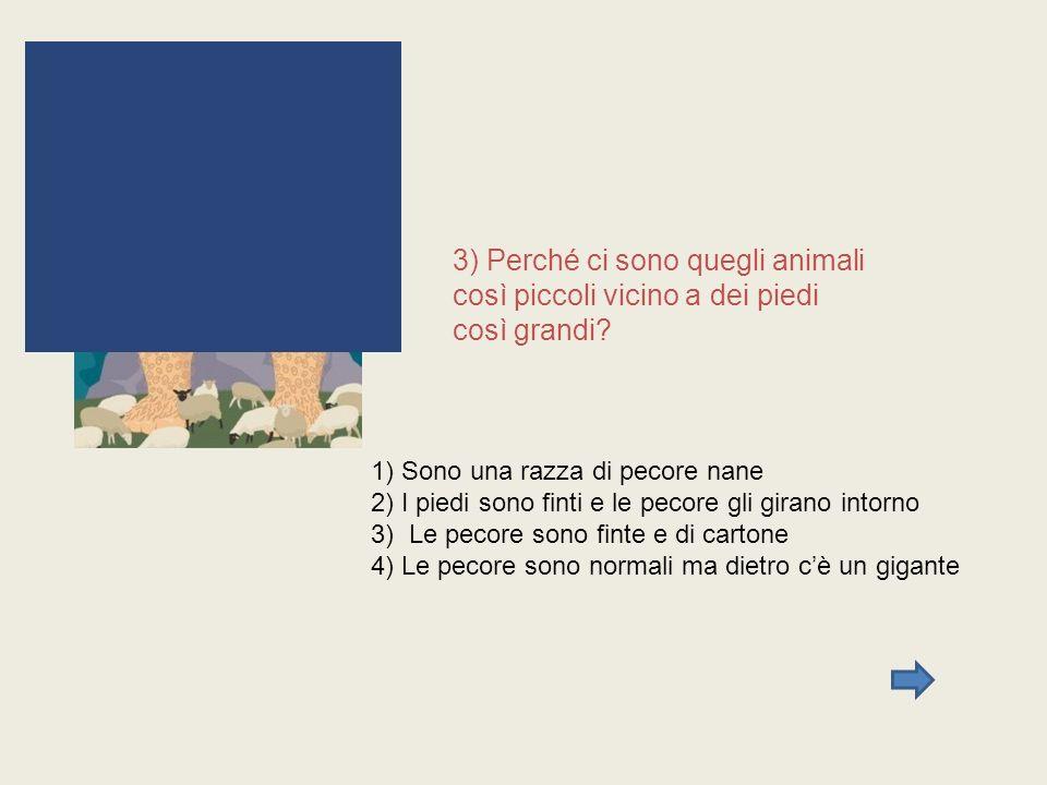 3) Perché ci sono quegli animali così piccoli vicino a dei piedi così grandi? 1) Sono una razza di pecore nane 2) I piedi sono finti e le pecore gli g