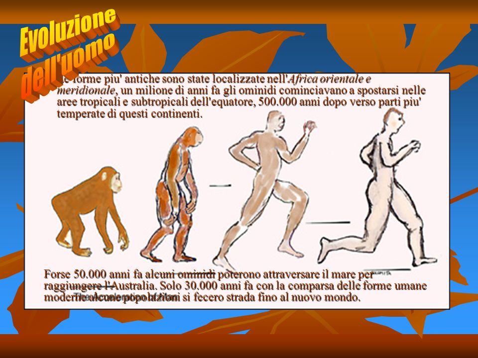 Le forme piu' antiche sono state localizzate nell'Africa orientale e meridionale, un milione di anni fa gli ominidi cominciavano a spostarsi nelle are