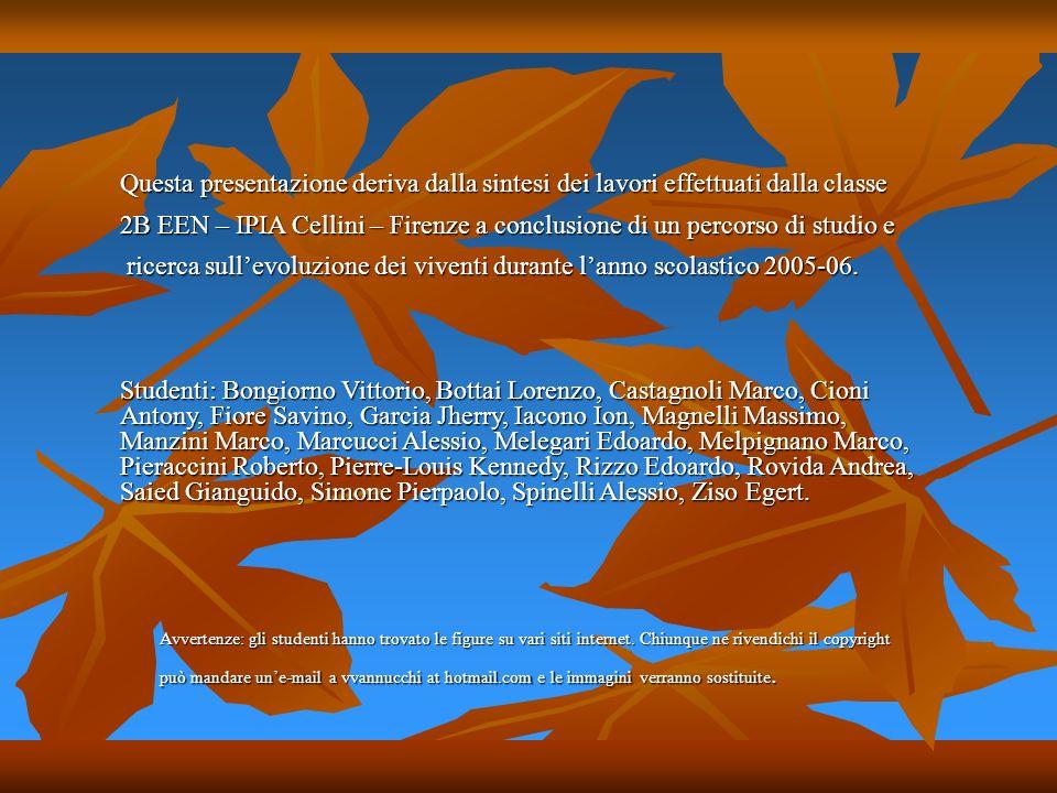 Questa presentazione deriva dalla sintesi dei lavori effettuati dalla classe 2B EEN – IPIA Cellini – Firenze a conclusione di un percorso di studio e