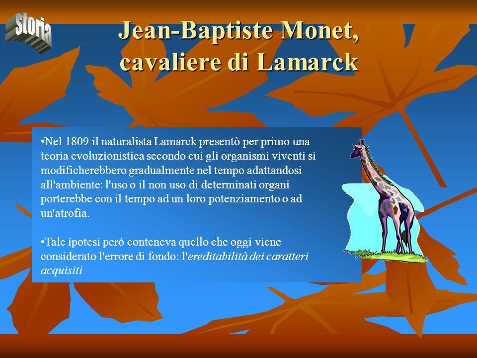 Jean-Baptiste Monet, cavaliere di Lamarck Nel 1809 il naturalista Lamarck presentò per primo una teoria evoluzionistica secondo cui gli organismi vive