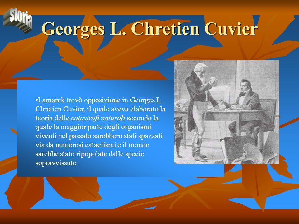 Georges L. Chretien Cuvier Lamarck trovò opposizione in Georges L. Chretien Cuvier, il quale aveva elaborato la teoria delle catastrofi naturali secon