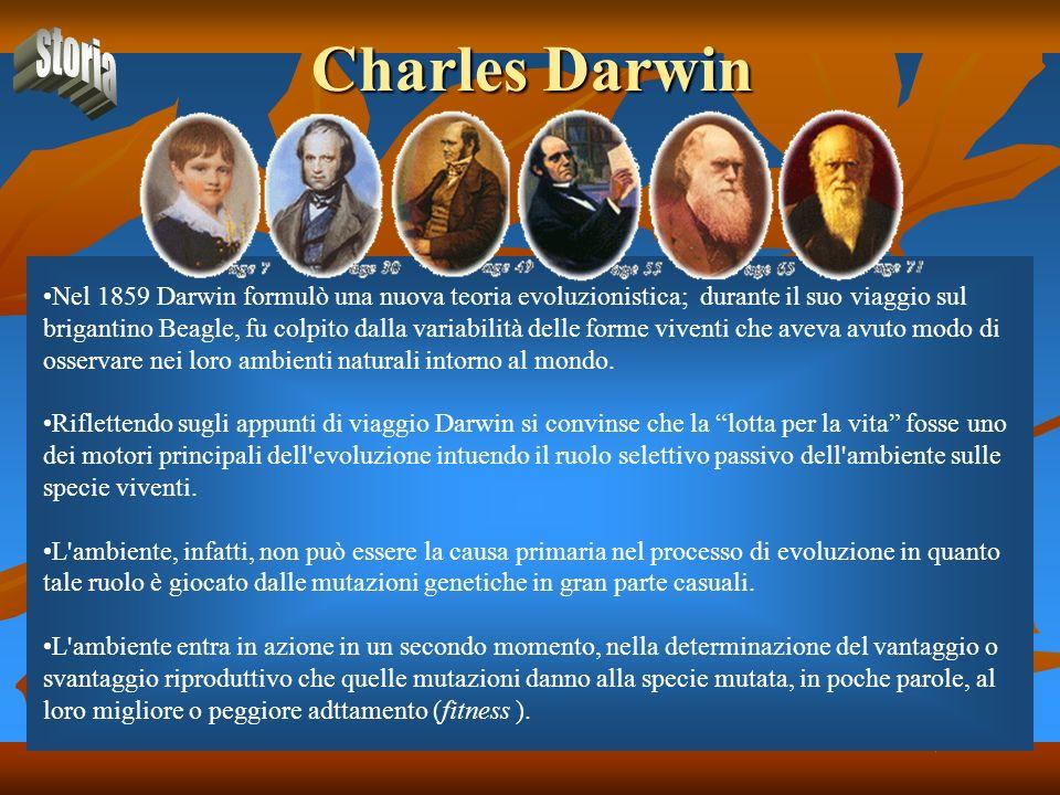Charles Darwin Nel 1859 Darwin formulò una nuova teoria evoluzionistica; durante il suo viaggio sul brigantino Beagle, fu colpito dalla variabilità de