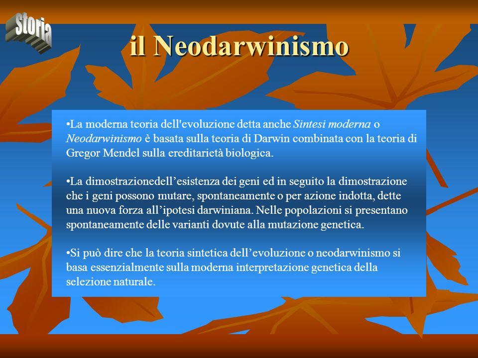 il Neodarwinismo La moderna teoria dell'evoluzione detta anche Sintesi moderna o Neodarwinismo è basata sulla teoria di Darwin combinata con la teoria