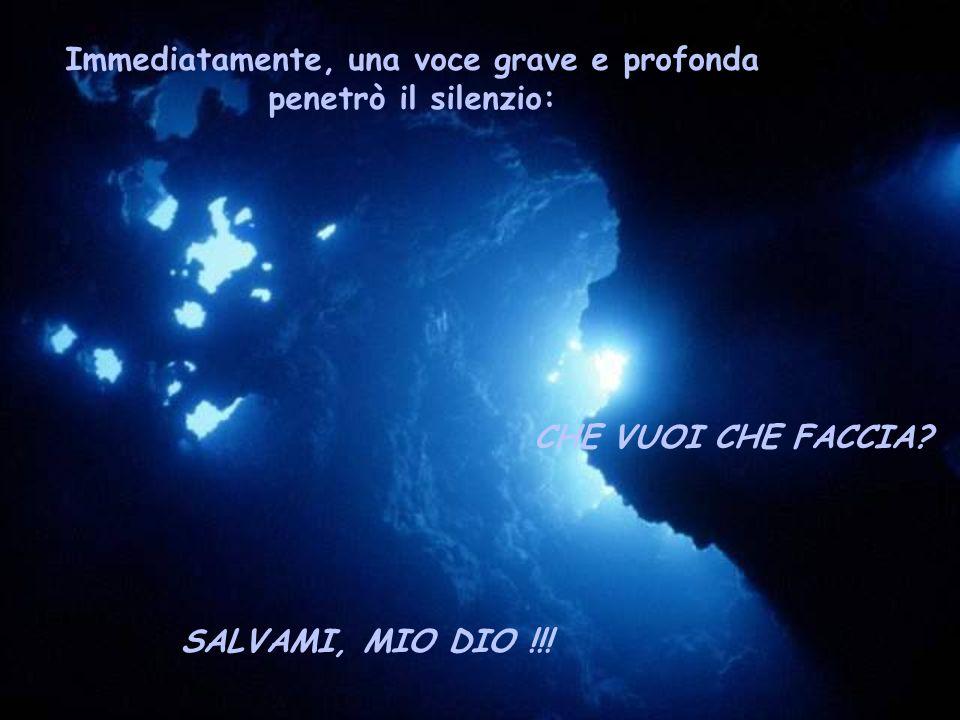 Immediatamente, una voce grave e profonda penetrò il silenzio: CHE VUOI CHE FACCIA? SALVAMI, MIO DIO !!!
